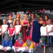 steinfeld-2011-0003