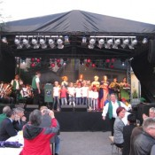 steinfeld-2011-0004