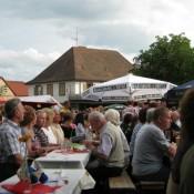 steinfeld-2011-0007