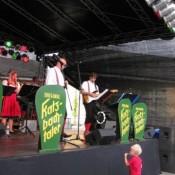 steinfeld-2011-0008