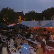 steinfeld-2011-0014