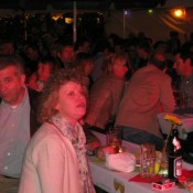steinfeld-2011-0025