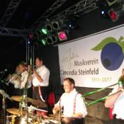 steinfeld-2011-0048