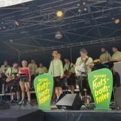 brigandefeschd-karlsruhe-2019-05-30-063